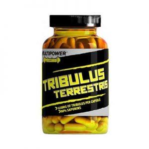 Tribulus terrestris Multipower