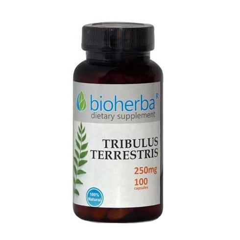 Tribulus terrestris Bioherba 100 caps 250mg